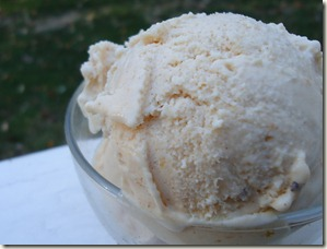 Recipe: Vegan Pumpkin Ice Cream